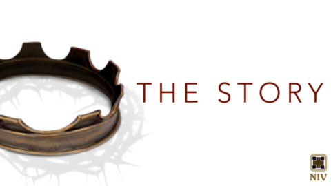 The Story Sermon Series Bumper